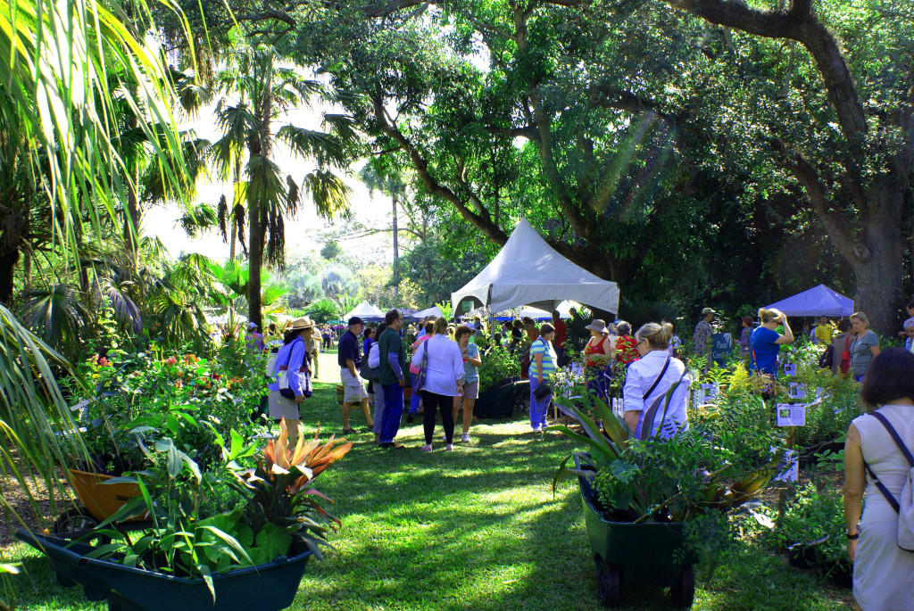 Plant Sale at Fairchild Tropical Garden